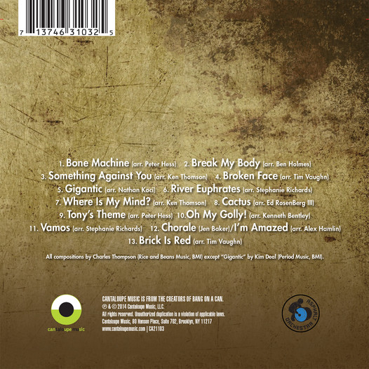 Asphalt Orchestra plays Pixies - Surfer Rosa back cover